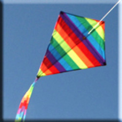 Kites (20)